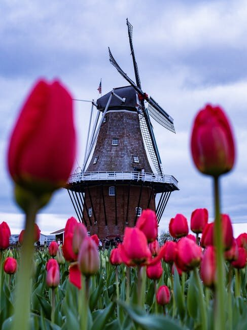 10 places you must visit when in the Netherlands