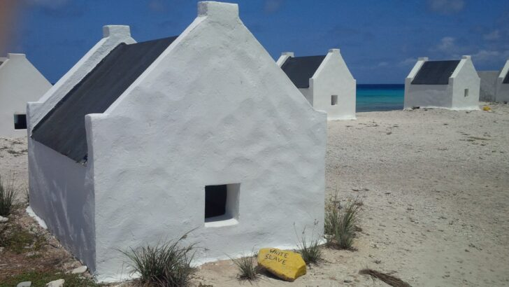Taking a Trip to Bonaire: Checklist!